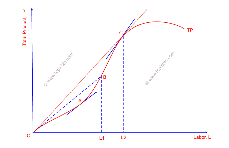 Relationships between total product, average product and marginal product of labor